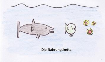 Kosystem see for Wassertiere im teich